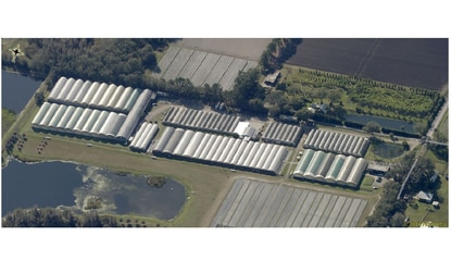 Surterra Wellness will grow and cultivate medical marijuana at the former Sunshine Growers nursery is at 3516 Hamilton Road in Lakeland.