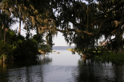 This is a view of Alligator Lake as seen from the canal connecting it to Lake Lizzie.