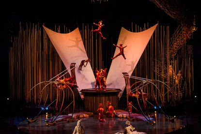 The excitement that only Cirque du Soleil provides may become a permanent fixture in Lake Mary.