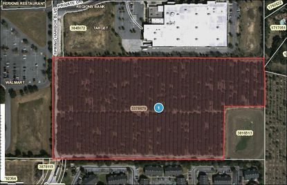 A new movie theater planned for Mount Dora would be behind Target and accessed from U.S. 441 via Spring Harbor Boulevard.