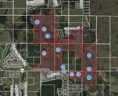 Highlighted in red are the 12 parcels planned for development in Groveland's Green Swamp area.