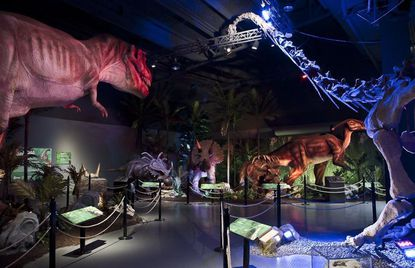 New dinosaur attraction coming to I-Drive, Artegon retailer preps for move